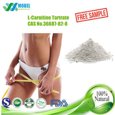 China L Carnitine Tartrate  CAS 36687-82-8 White Crystalline Powder Food Grade For Nutrition Supplements supplier