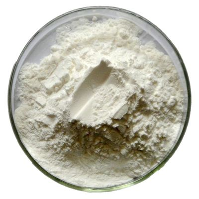 Nootropic Aniracetam Improve Memory Power CAS 72432-10-1 Pharmaceutical Grade 99% Purity